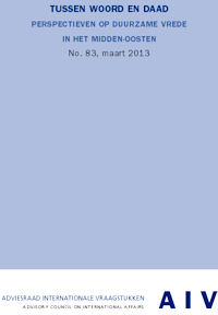 AIV-rapport2